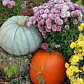 Autumn Still Life by Suzanne Gaff