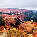 Autumn Storm At Cedar Breaks by TL Mair