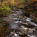 Autumn Stream by Andrew Soundarajan