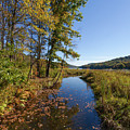 Autumn Stream At Justus Lake by Lon Dittrick