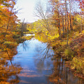 Autumn Stream by Rachel Snydstrup