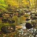 Autumn Stream Reflections by Stephen  Vecchiotti