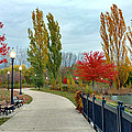 Autumn Stroll In The Park by Michael Rucker