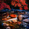 Autumn Summit by David Andersen