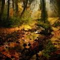 Autumn Sunrays by Gun Legler