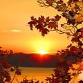 Autumn Sunrise by Carol Dyer