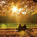 Autumn Sunshine In The Lichtentaler Allee. Baden-baden. Germany. by Gerlya Sunshine