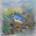 Autumn Sweet Gum With Blue Jay by Sheri Hubbard
