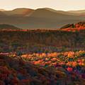 Autumn Tapestry by Neil Shapiro