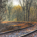Autumn Tracks by Rod Best