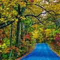 Autumn Trail by Robert Cox