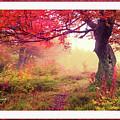 Autumn Tree by Garland Johnson