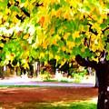 Autumn Trees 6 by Jeelan Clark