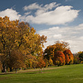 Autumn Under The Sky by Chad Davis