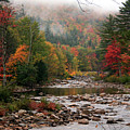 Autumn View Of  The Swift River  by Paula Guttilla