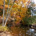 Autumn Vintage Landscape 5 by Jeelan Clark