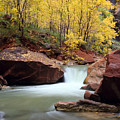 Autumn Virgin River In Zion by Pierre Leclerc Photography