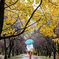 Autumn Walk by Vladimir Kholostykh