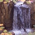 Autumn Waterfall by Tina Barnash