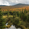 Autumn - White Mountains New Hampshire by Erin Paul Donovan