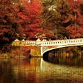 Autumnal Bow Bridge  by Jessica Jenney