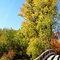 Autumnal North Bridge by Luke Moore