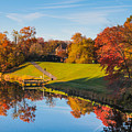 Autumnal Scene by Thomas Marchessault