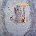 Autumns Child Or Hand In Concrete by Heather Kirk