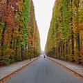 Autumn's Colours by Christian Sandberg