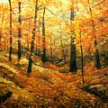 Autumns Hidden Sanctuary by Connie Tom