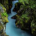 Avalanche Creek- Glacier National Park by John Vose