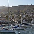 Avalon Santa Catalina Island by Kyle Hanson