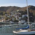 Avalon Village Catalina Island by Kyle Hanson