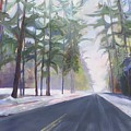 Avenue Of The Pines-winter by Terri Messinger