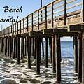 Avila Pier Avila Beach California by Barbara Snyder