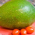 Avocado by Bert Mailer