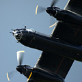Avro Lancaster by Angel Ciesniarska