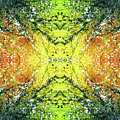Awakened For Higher Perspective #1423 by Rainbow Artist Orlando L