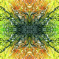 Awakened For Higher Perspective #1426 by Rainbow Artist Orlando L