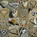 Awesome Hearts Found In Nature - Valentine S Day by Daliana Pacuraru