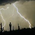 Az Desert Storm by James BO  Insogna