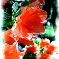 Azaleas In The Spring by Patricia Griffin Brett