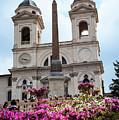 Azaleas On The Spanish Steps In Rome by Brenda Kean