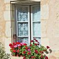 Azay Le Rideau Bridge, Window, Lace by Curt Rush