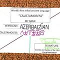 Azerbaizian by Chandra Mohan Killo