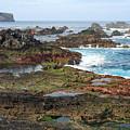 Azores Seascape by Gaspar Avila