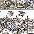 Aztec Fishermen by Granger