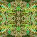 Aztec Kaleidoscope - Pattern 009 - Dark Olive by Julie Turner