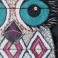 Aztec Owly by Sarah Jewett
