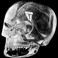 Aztec Rock Crystal Skull by Granger